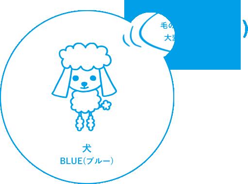犬 BLUE(ブルー)